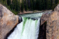 Top of the Lower Falls on the Yellowstone River - Yellowstone National Park